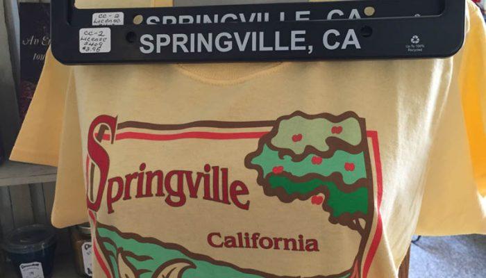 Springville T-Shirt